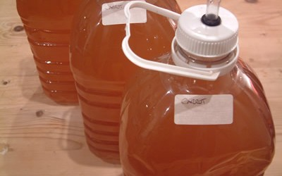 3 Gallons Carrot Wine